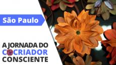 07/11 - São Paulo - A Jornada do Cocriador Consciente