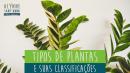 Tipos de Plantas e suas Classificações