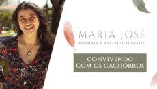 Animais e Espiritualidade - Convivendo com Cachorros