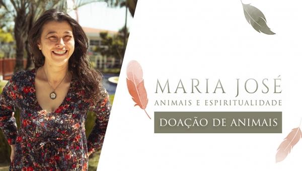 Animais e Espiritualidade - Doação de Animais