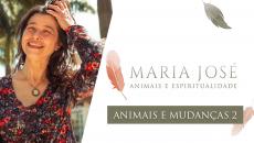 Animais e Mudanças - Parte 2